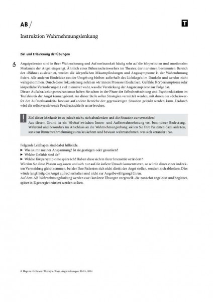 Angststörungen: Instruktion Wahrnehmungslenkung