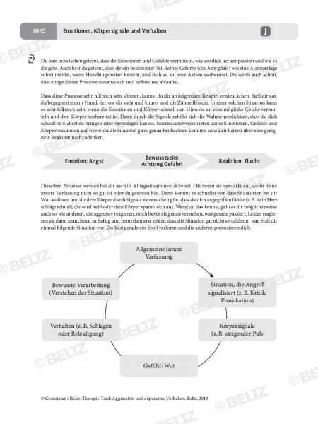 Aggression: Emotionen, Körpersignale und Verhalten