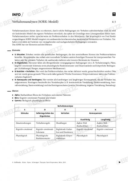 Depression: Verhaltensanalysen (SORK-Modell)