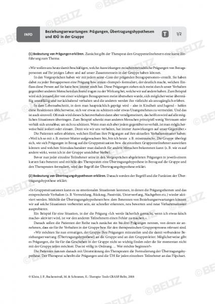 CBASP: Beziehungserwartungen: Prägungen, Übertragungshypothesen und IDÜ in der Gruppe