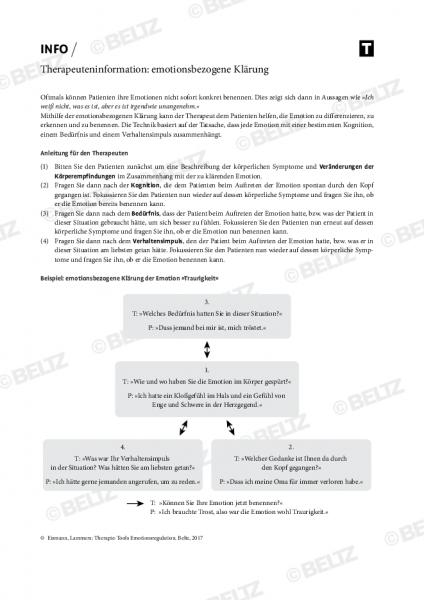Emotionsregulation: Therapeuteninformation zur emotionsbezogenen Klärung